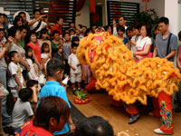 Lion dance to welcome the year of Ox